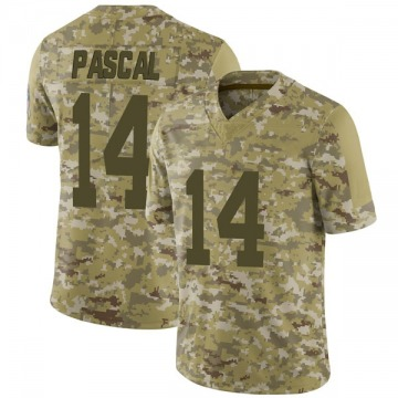 Youth Nike Indianapolis Colts Zach Pascal Camo 2018 Salute to Service Jersey - Limited